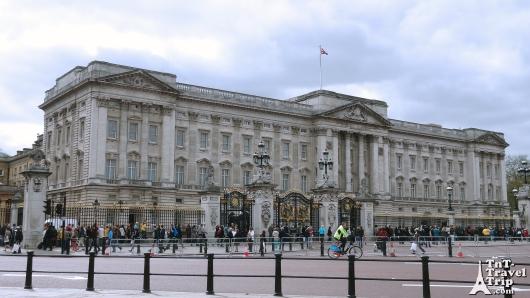 Blog 2 - Buckingham front grille
