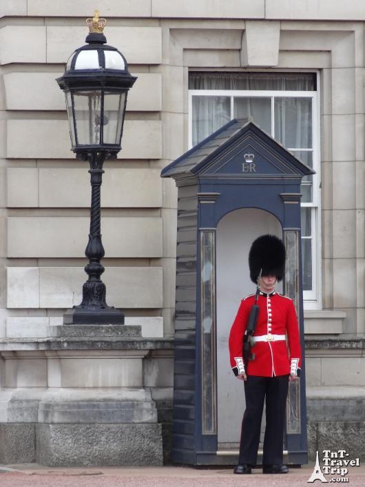 Blog 6 - Buckingham Garde