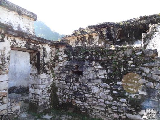 Palenque 01