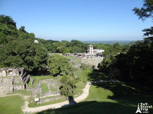 Palenque 06