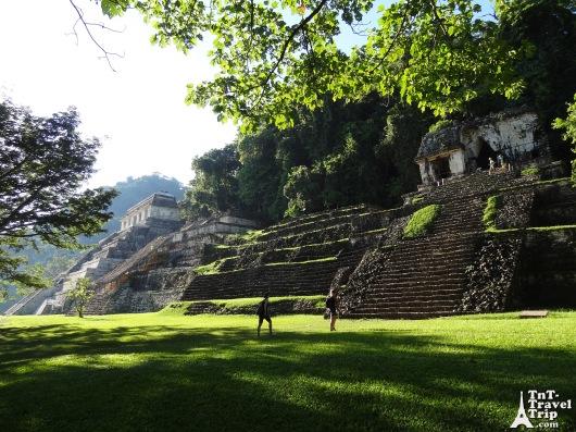 Palenque 08
