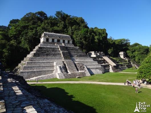 Palenque 12