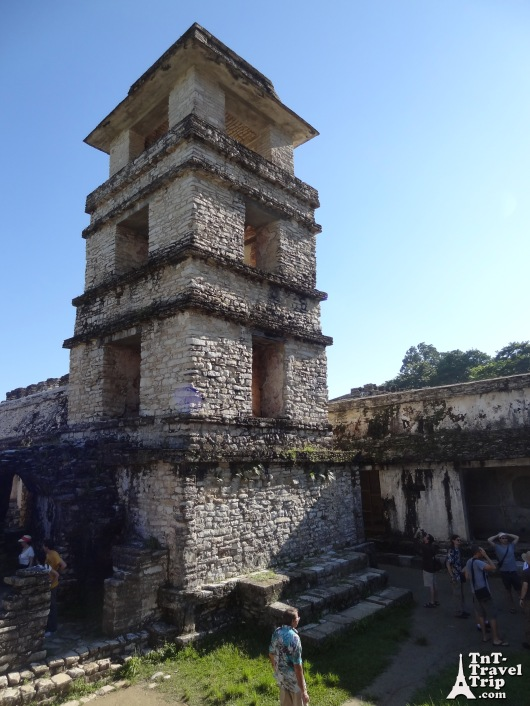 Palenque 13